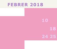 FEBRER2018